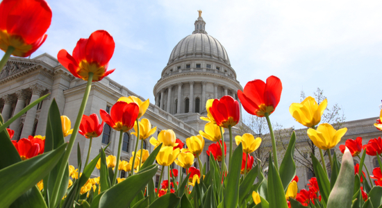 Wisconsin Capitol in Spring