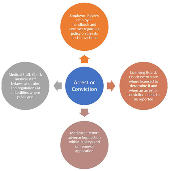 Chart of considerations to take on arrest or conviction
