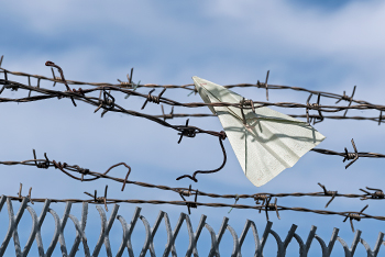 paper plane caugh in barbed wire fence