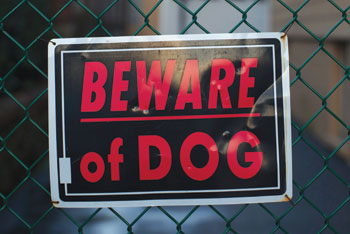 Beward of dog sign
