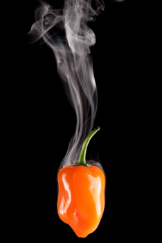 smoking hot pepper