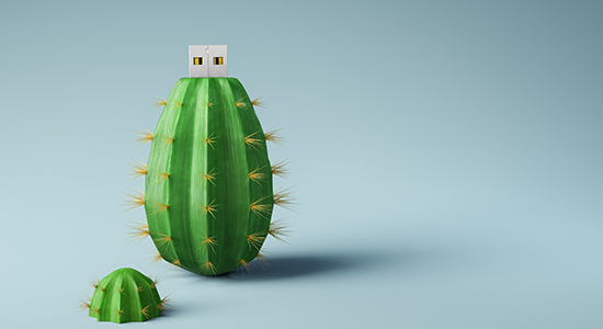cactus-shaped flash drive