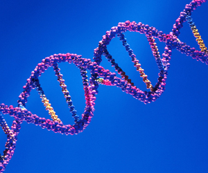 Wisconsin appeals court downs 