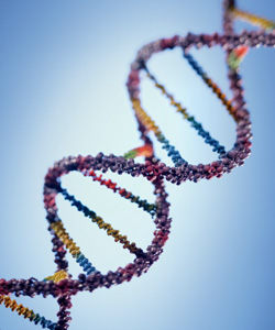 Wisconsin, U.S. Supreme Court Will Consider DNA at Arrest Law