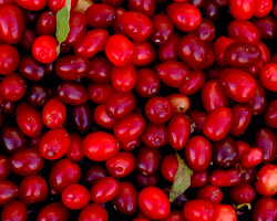 $16.4 million tax suit continues to 