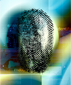 Forensic evidence: Do criminal lawyers need 